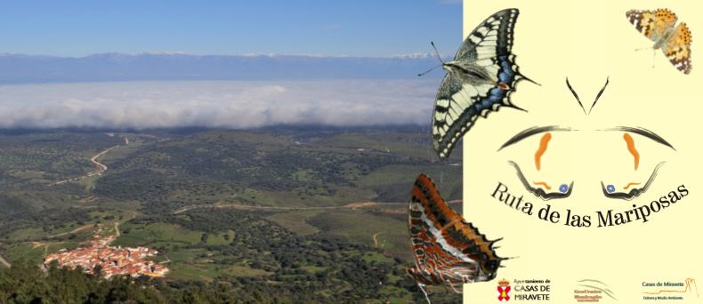 Aprovecha tu escapada rural para recorrer la ruta de las mariposas y contemplar hasta veinticuatro especies distintas de estos fascinantes insectos. Un camino con antiguos emplazamientos e interesantes formaciones geológicas; ocho kilómetros entre ida y vuelta entre un bosque de alcornoques y matorral de umbría, con impresionantes vistas de La Vera y el Campo Arañuelo al norte, de las Villuercas al este, de los llanos de Trujillo al sur y del Parque Nacional de Monfragüe al oeste.