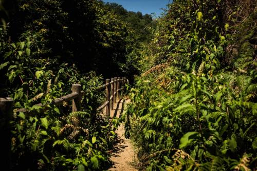 Paseo por Jarndilla de la Vera, una bonita ruta